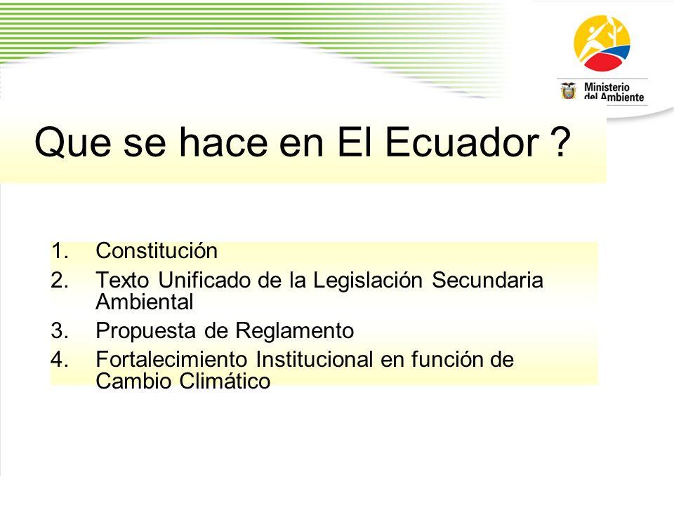 Que se hace en El Ecuador