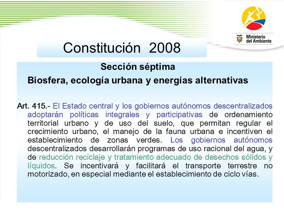 Constitución 2008 Sección séptima