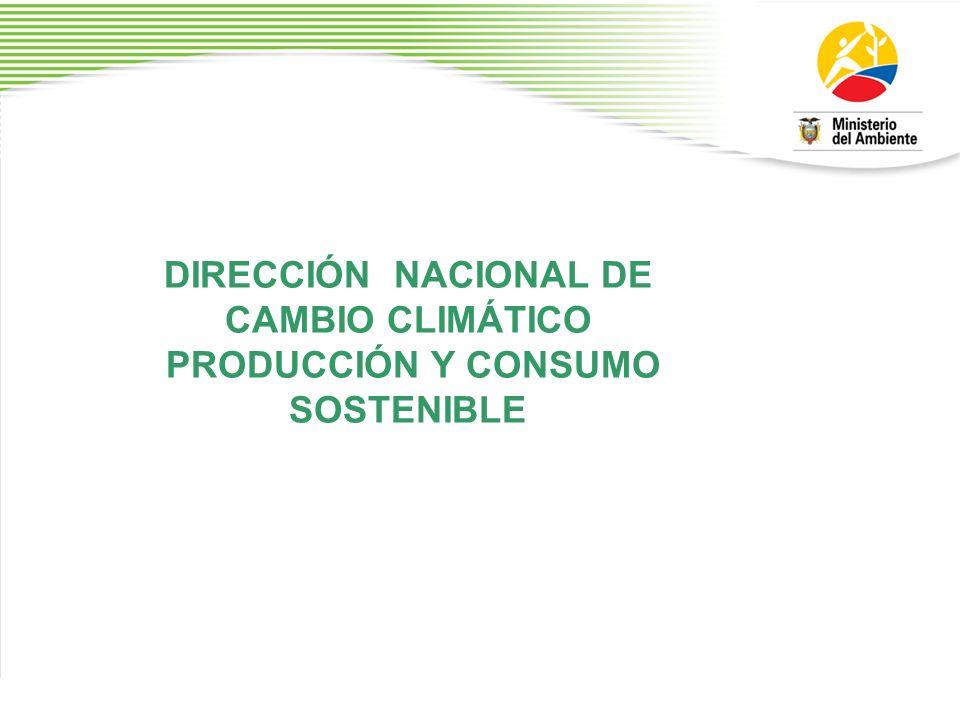 DIRECCIÓN NACIONAL DE CAMBIO CLIMÁTICO PRODUCCIÓN Y CONSUMO SOSTENIBLE