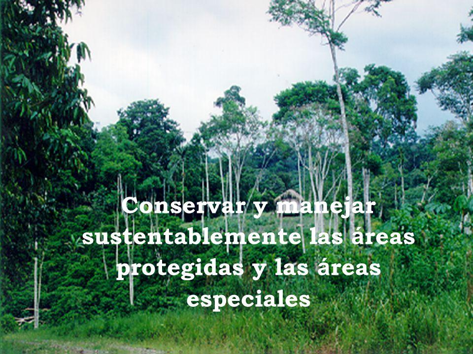 Conservar y manejar sustentablemente las áreas protegidas y las áreas especiales