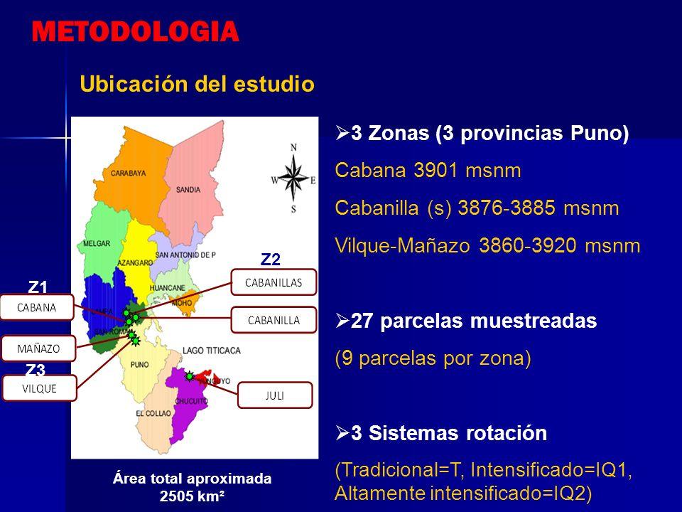 Área total aproximada 2505 km²
