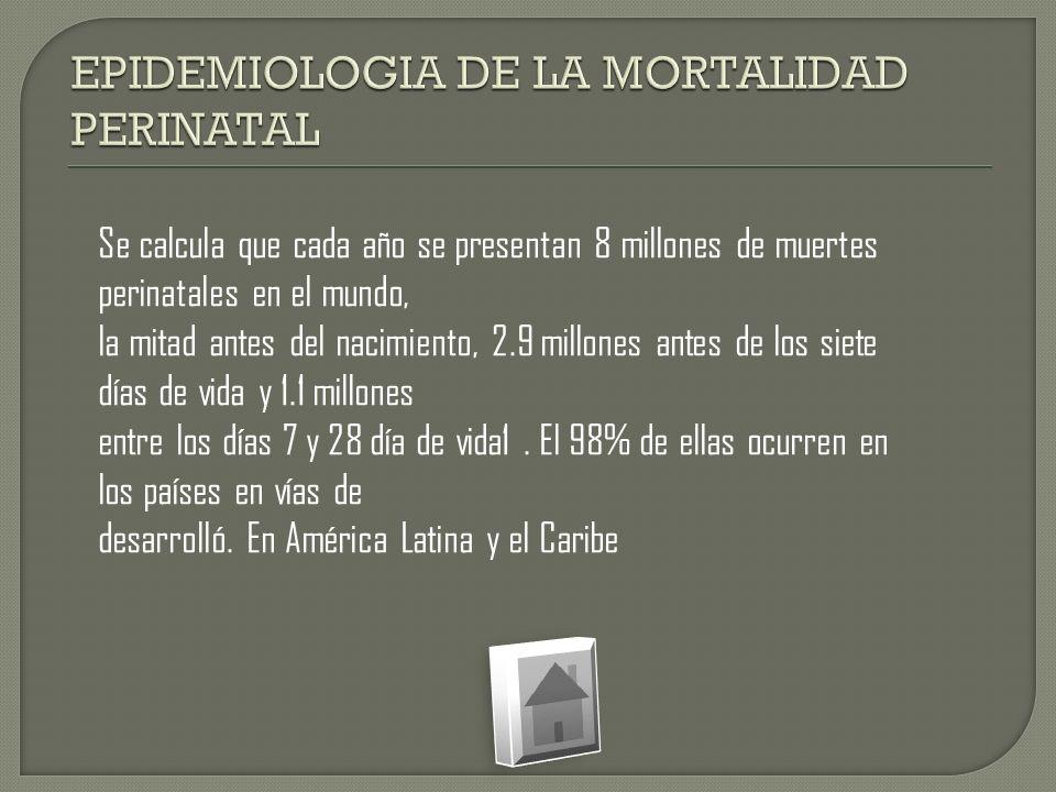 EPIDEMIOLOGIA DE LA MORTALIDAD PERINATAL