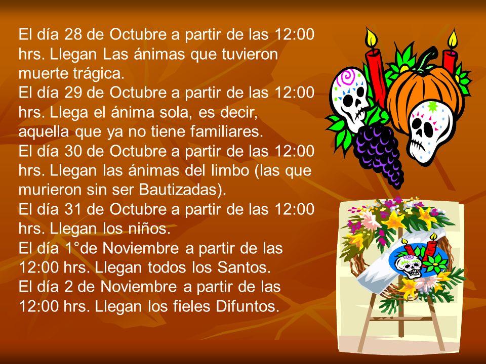 El día 28 de Octubre a partir de las 12:00 hrs