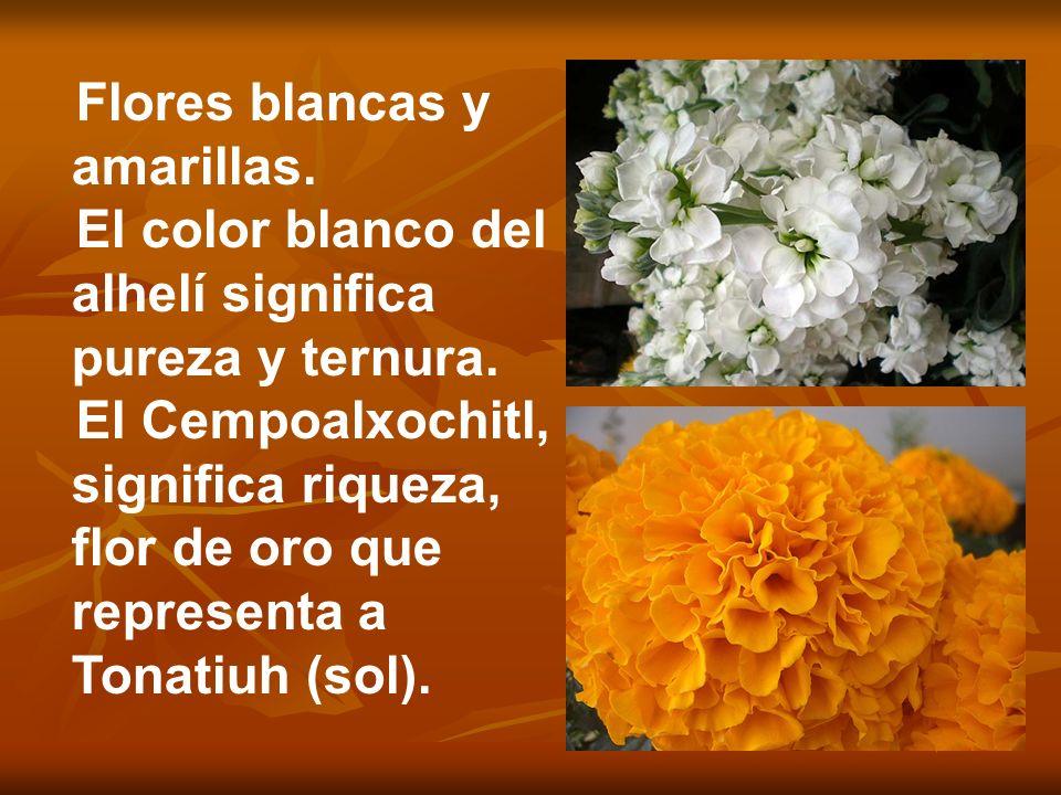 Flores blancas y amarillas.