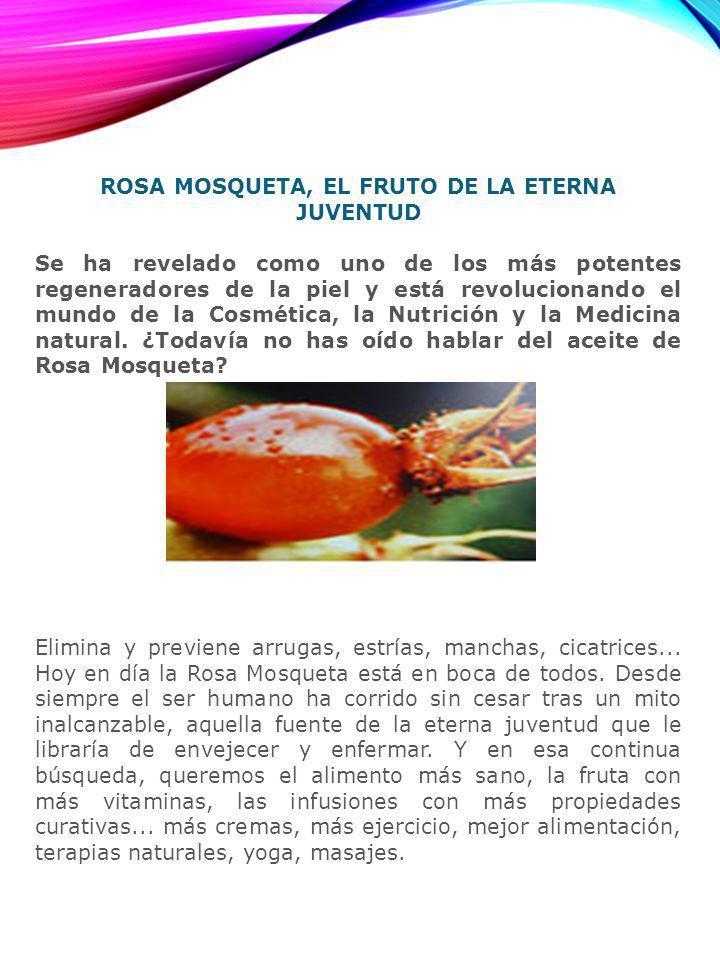ROSA MOSQUETA, EL FRUTO DE LA ETERNA JUVENTUD