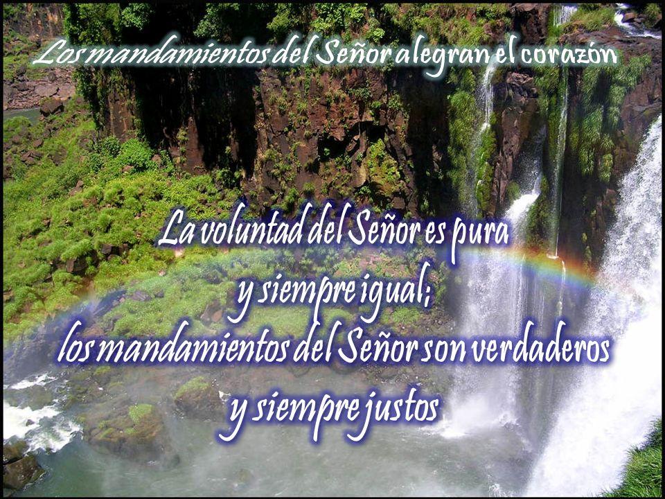 Los mandamientos del Señor alegran el corazón