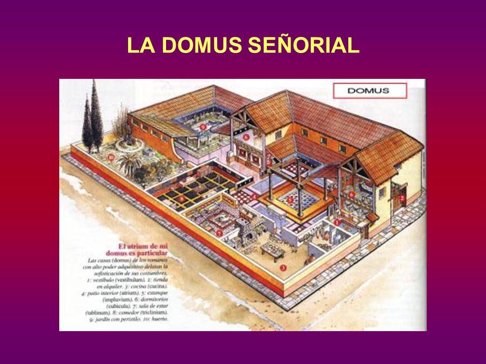 LA DOMUS SEÑORIAL
