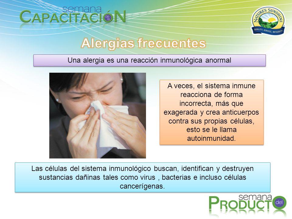Una alergia es una reacción inmunológica anormal
