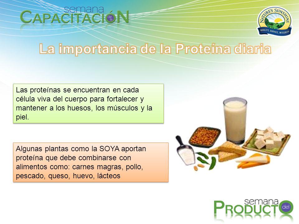 La importancia de la Proteína diaria