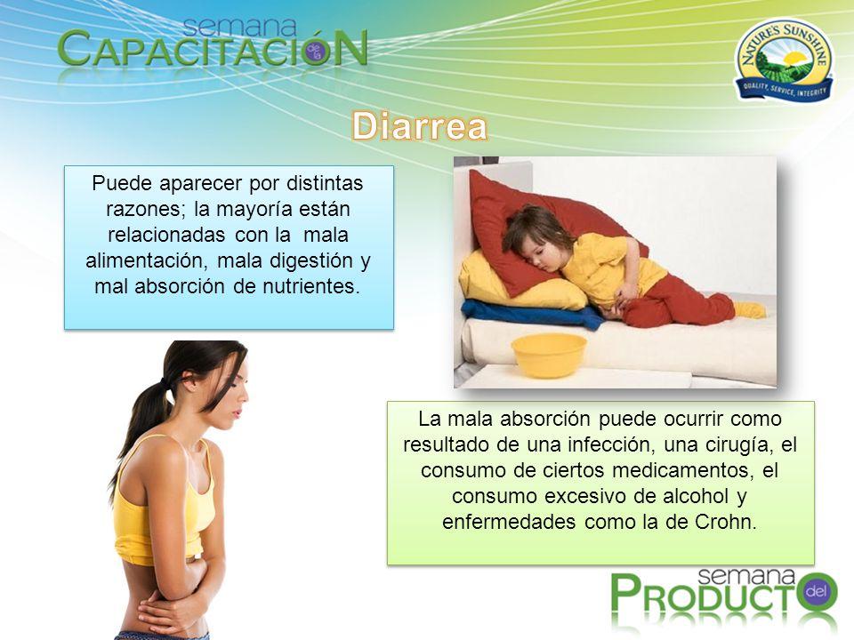 Diarrea Puede aparecer por distintas razones; la mayoría están relacionadas con la mala alimentación, mala digestión y mal absorción de nutrientes.