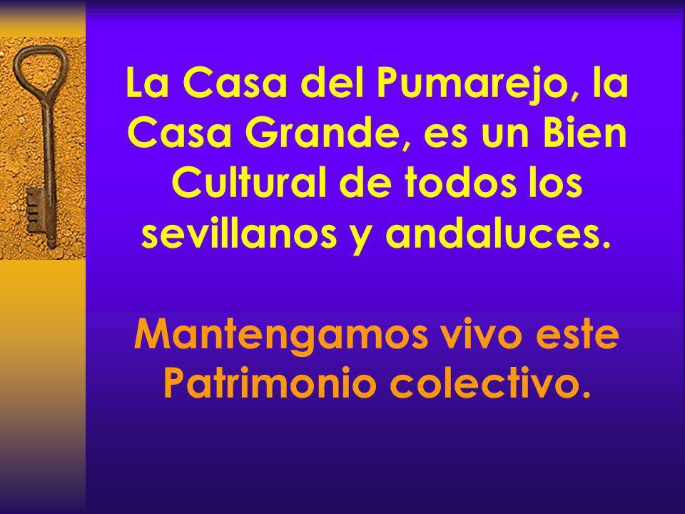 La Casa del Pumarejo, la Casa Grande, es un Bien Cultural de todos los sevillanos y andaluces.