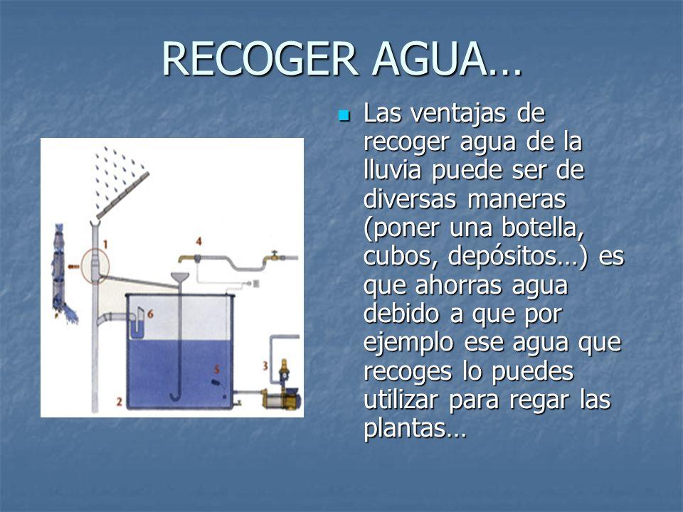 Hecho por lorena almerge vi uales cristina peralta - Recoger agua lluvia ...