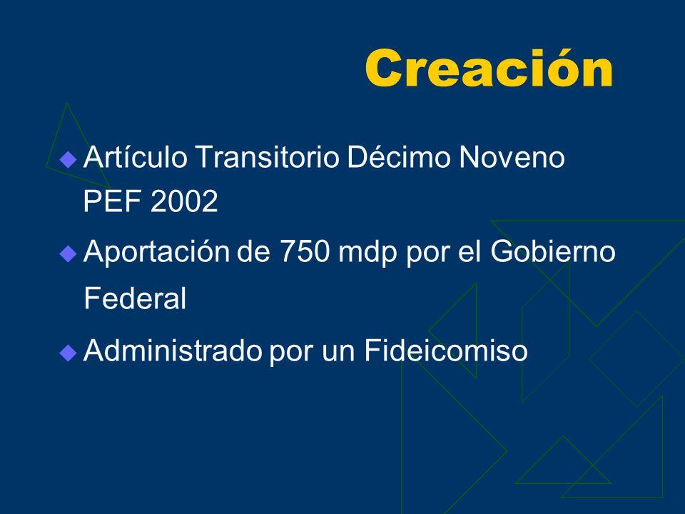 Creación Artículo Transitorio Décimo Noveno PEF 2002