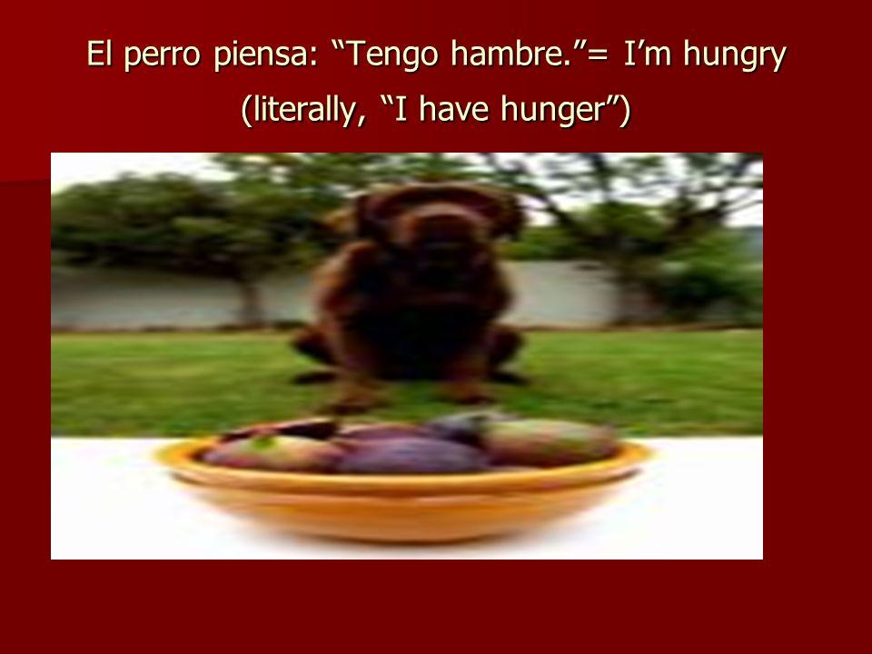 El perro piensa: Tengo hambre