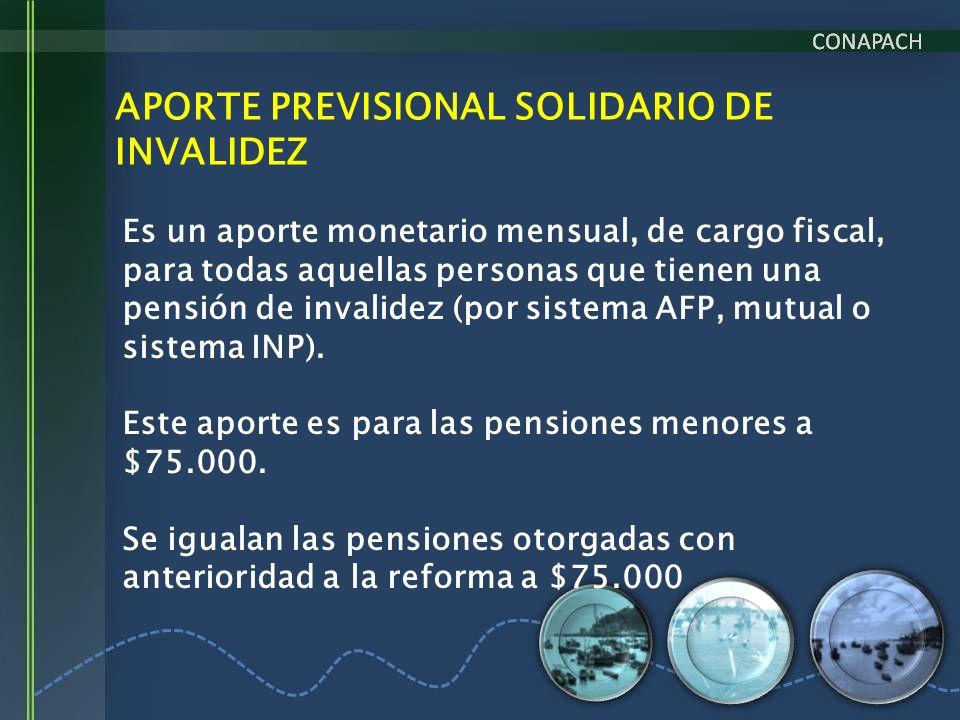 APORTE PREVISIONAL SOLIDARIO DE INVALIDEZ