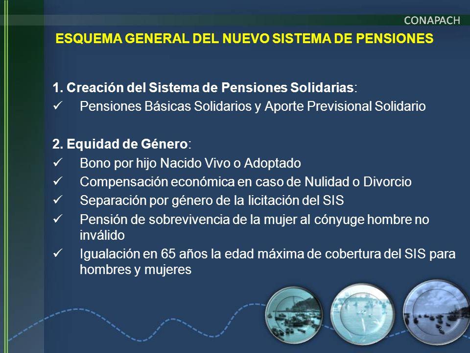 ESQUEMA GENERAL DEL NUEVO SISTEMA DE PENSIONES