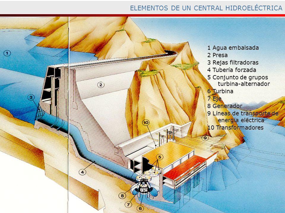 ELEMENTOS DE UN CENTRAL HIDROELÉCTRICA