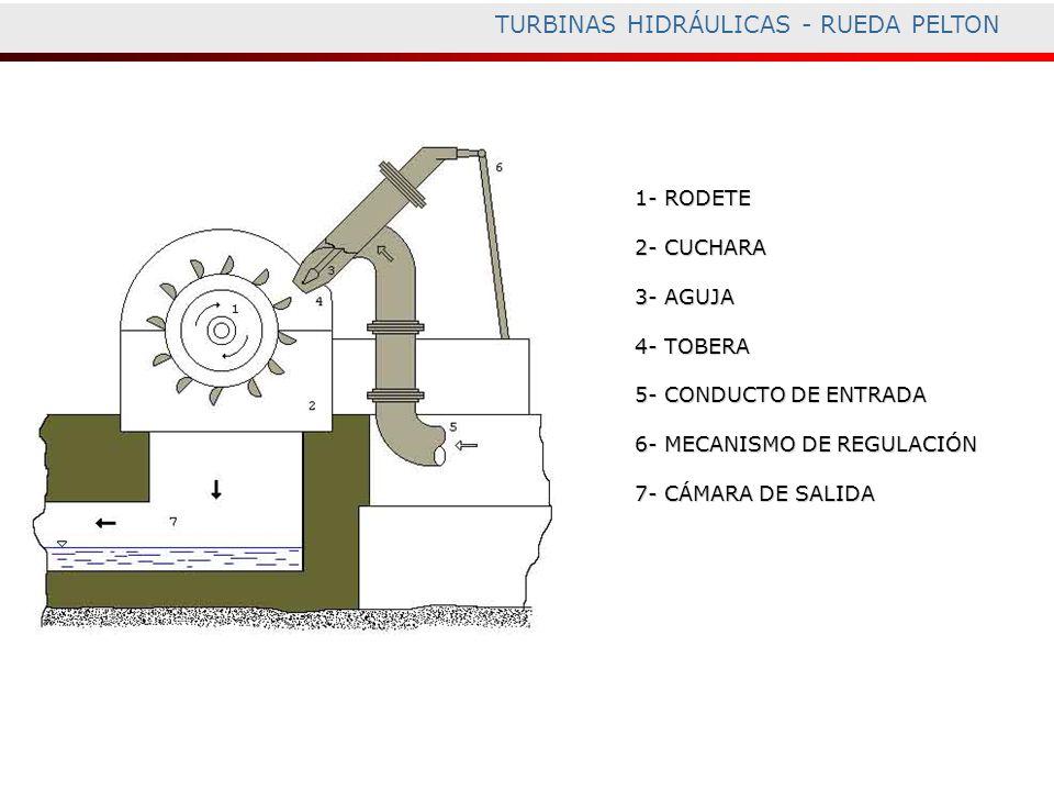 TURBINAS HIDRÁULICAS - RUEDA PELTON