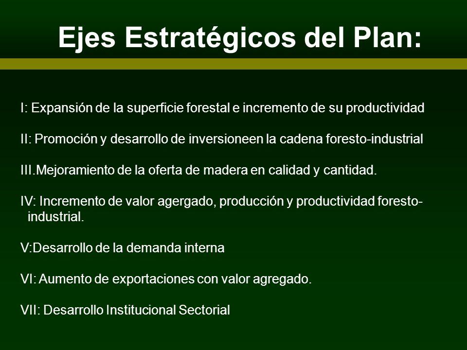 Ejes Estratégicos del Plan: