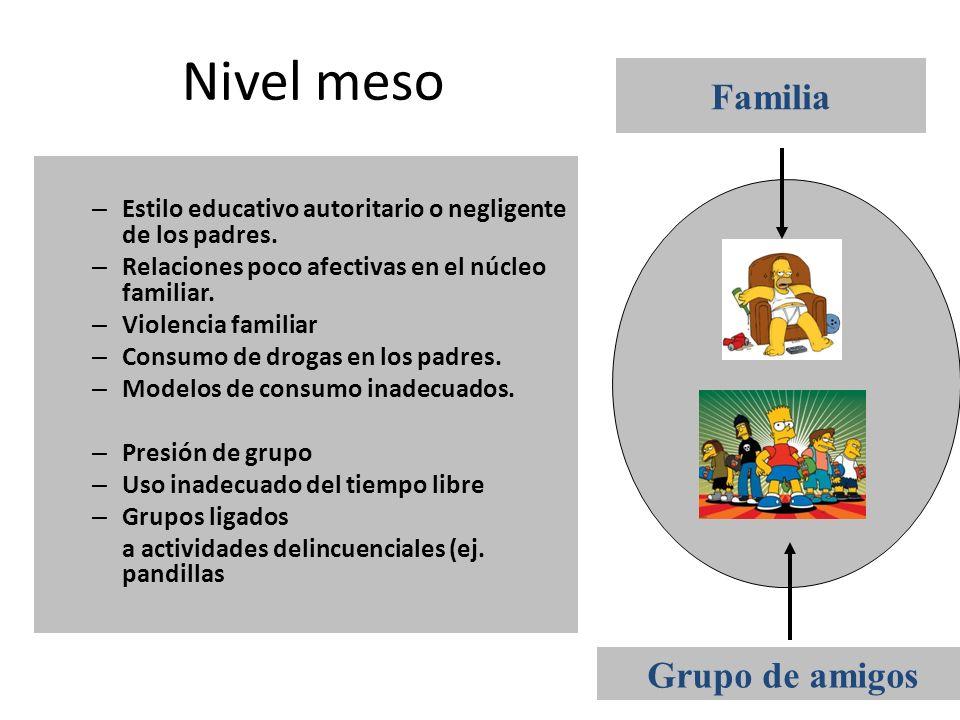 Nivel meso Familia Grupo de amigos