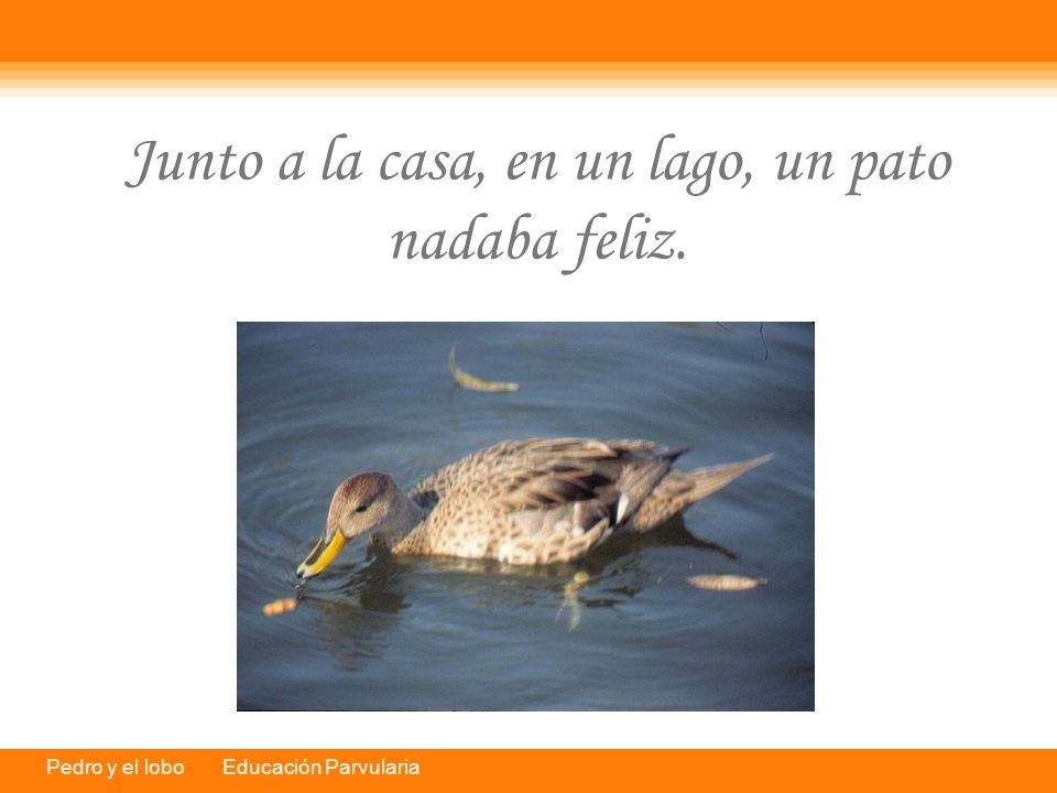 Junto a la casa, en un lago, un pato nadaba feliz.