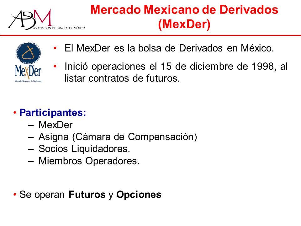 Mercado Mexicano de Derivados (MexDer)
