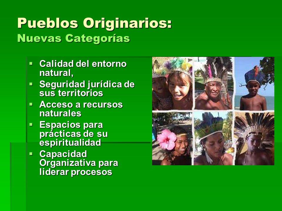 Pueblos Originarios: Nuevas Categorías