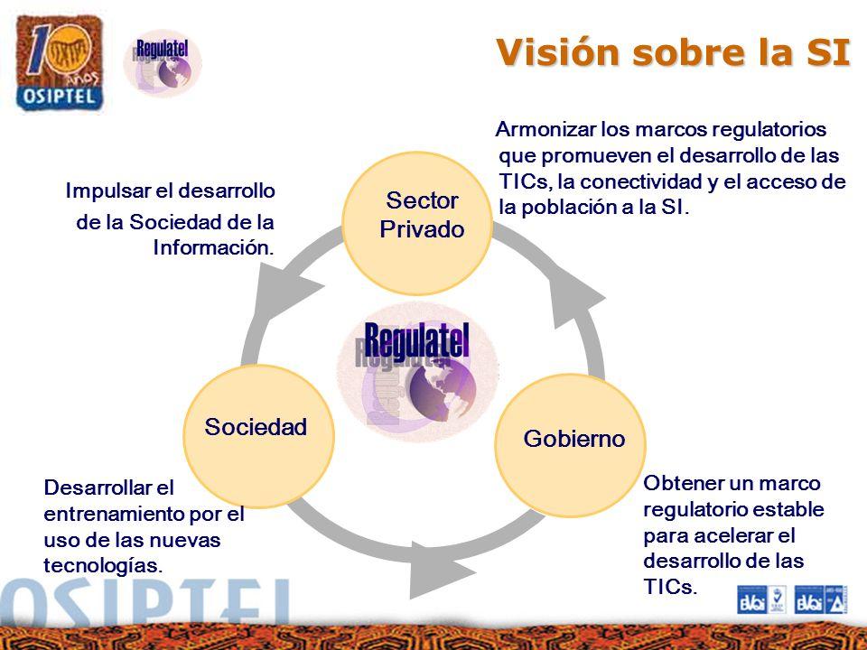 Visión sobre la SI Sector Privado Sociedad Gobierno