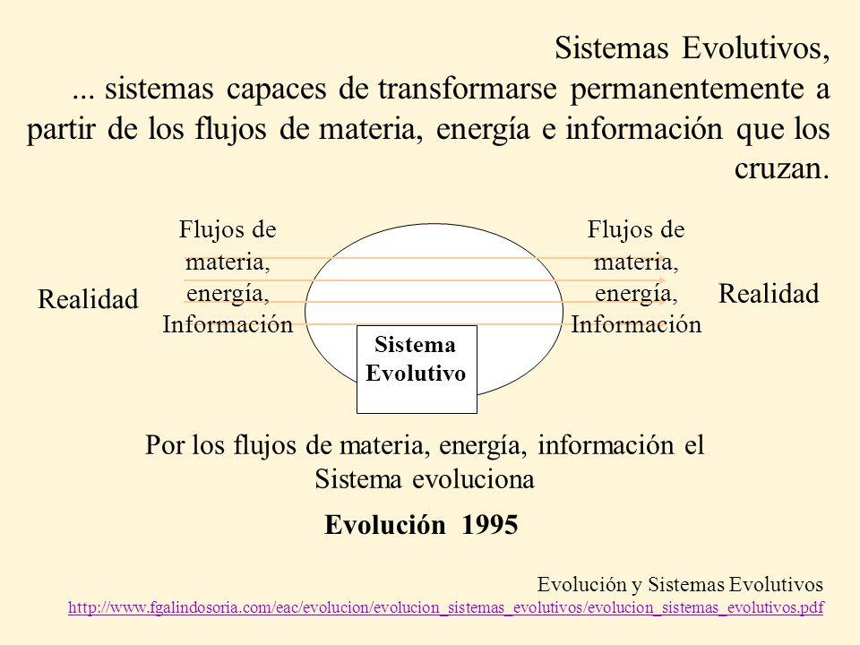 Sistemas Evolutivos, ... sistemas capaces de transformarse permanentemente a partir de los flujos de materia, energía e información que los cruzan.