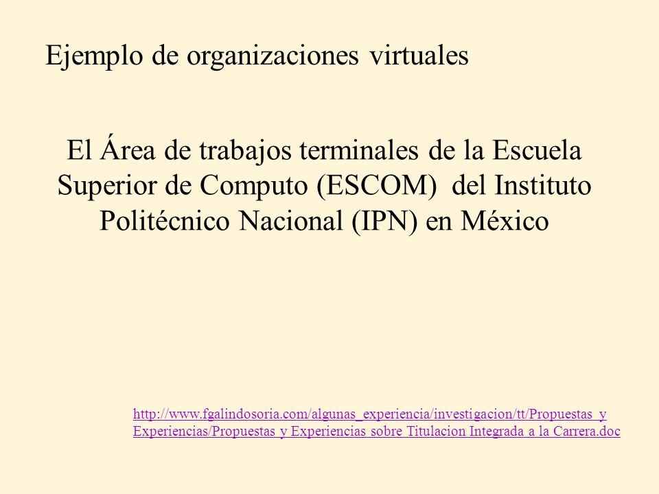 Ejemplo de organizaciones virtuales