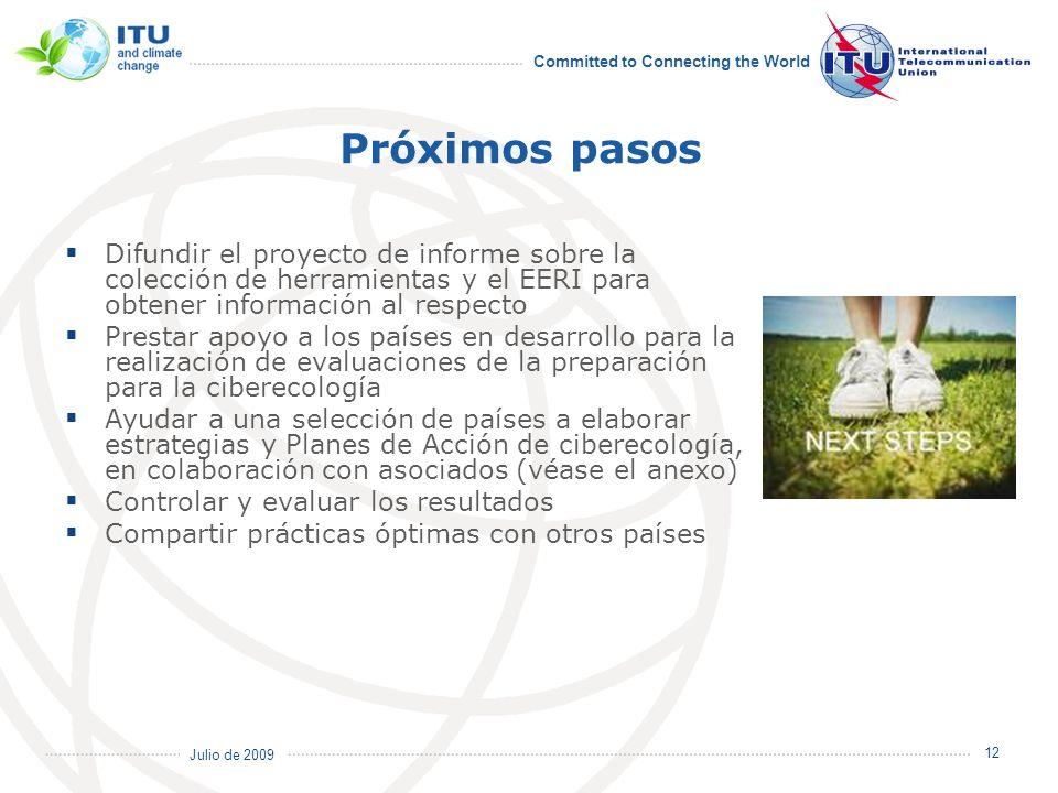Próximos pasos Difundir el proyecto de informe sobre la colección de herramientas y el EERI para obtener información al respecto.