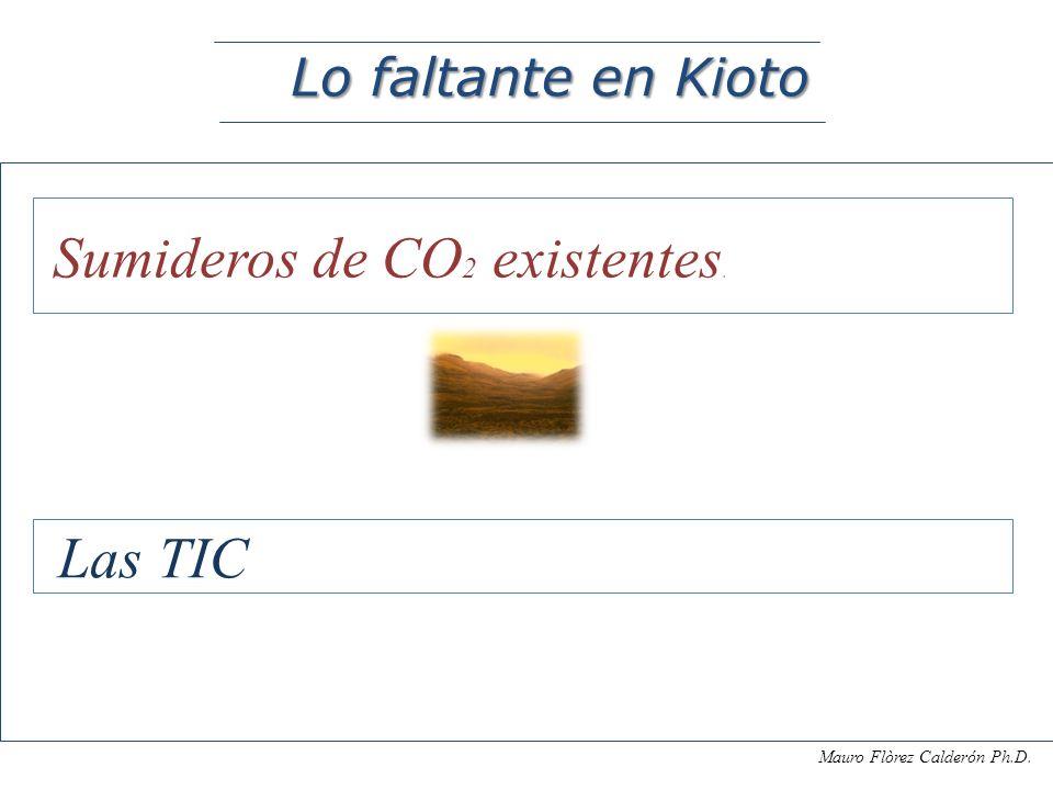 Las TIC Lo faltante en Kioto Sumideros de CO2 existentes.