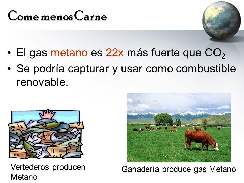 Come menos Carne El gas metano es 22x más fuerte que CO2