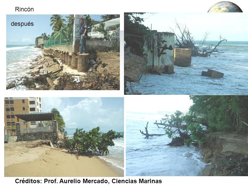 Rincón después Créditos: Prof. Aurelio Mercado, Ciencias Marinas