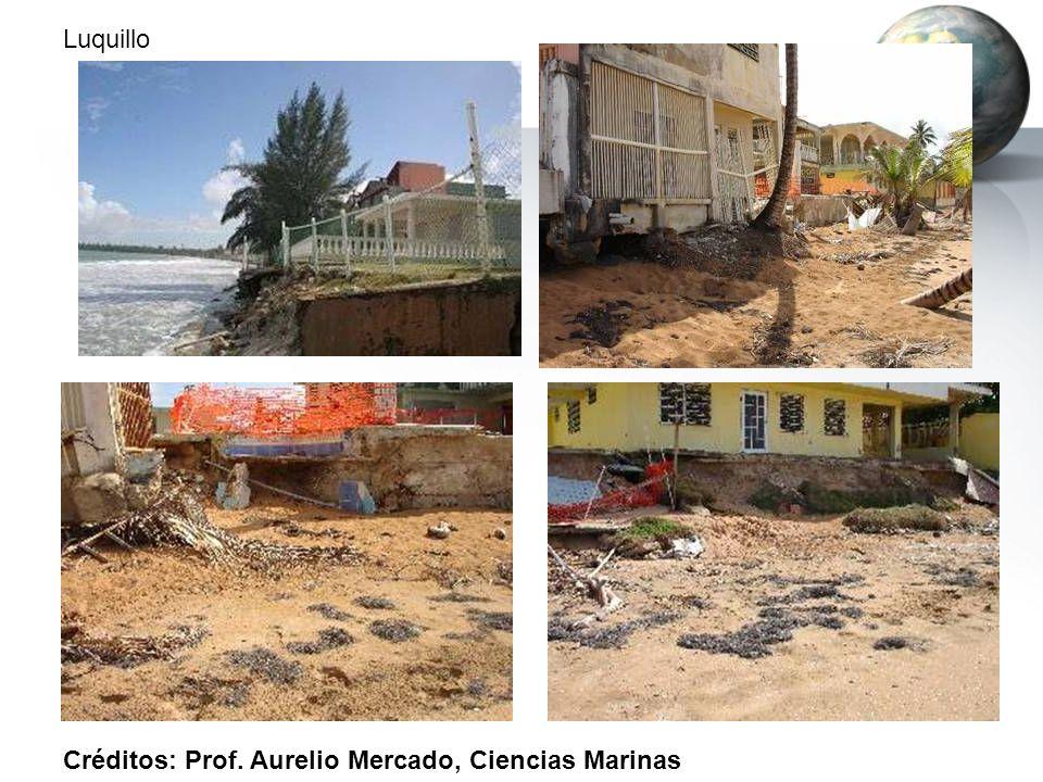 Luquillo Créditos: Prof. Aurelio Mercado, Ciencias Marinas
