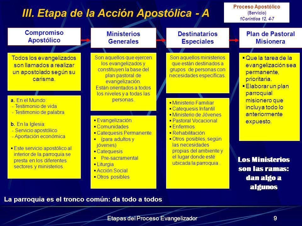 III. Etapa de la Acción Apostólica - A