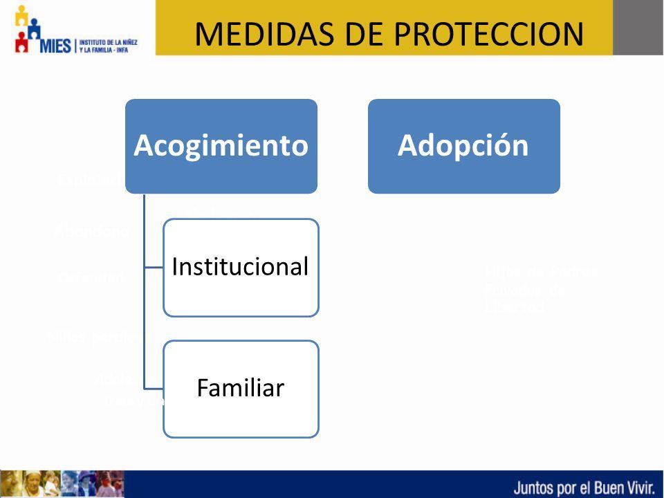 MEDIDAS DE PROTECCION Acogimiento Adopción Institucional Familiar