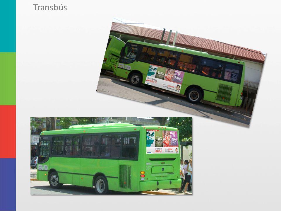 Transbús