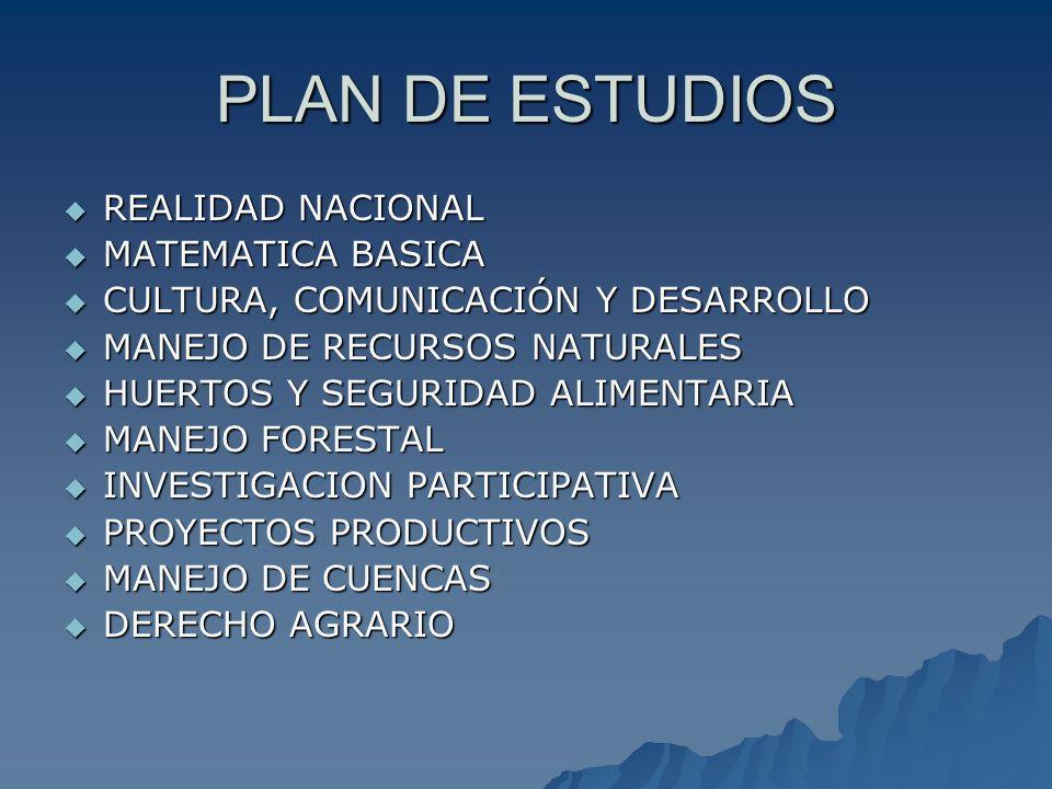 PLAN DE ESTUDIOS REALIDAD NACIONAL MATEMATICA BASICA