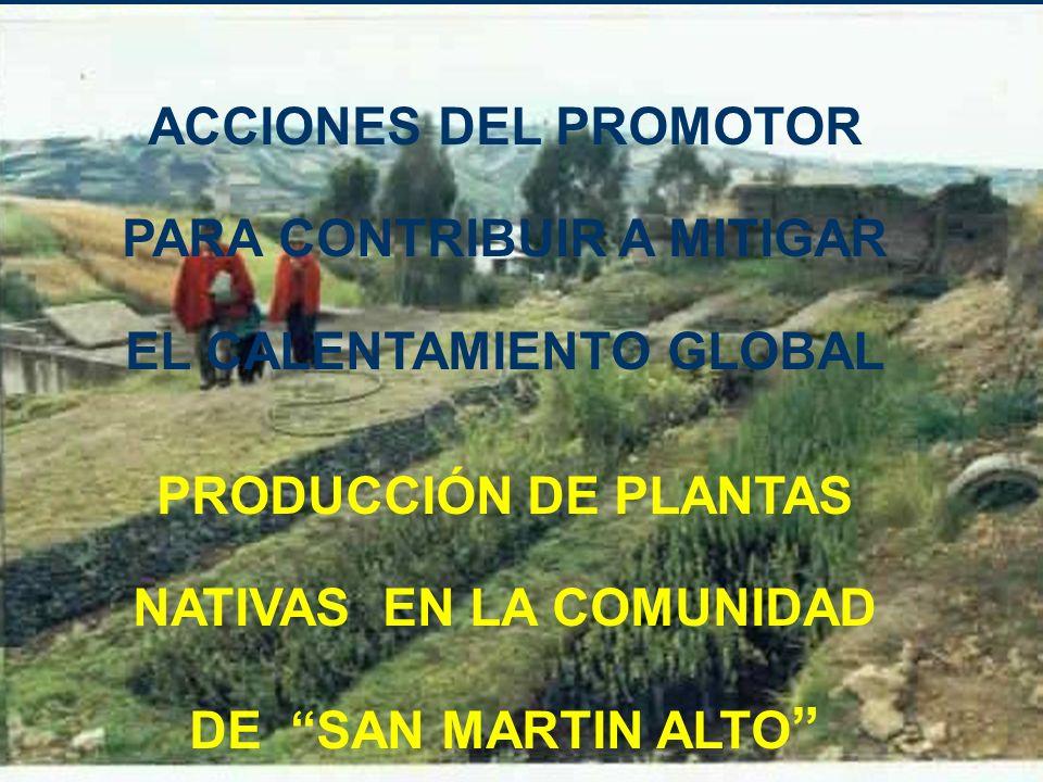PRODUCCIÓN DE PLANTAS NATIVAS EN LA COMUNIDAD DE SAN MARTIN ALTO