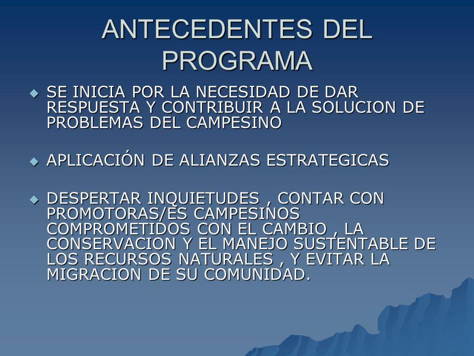 ANTECEDENTES DEL PROGRAMA
