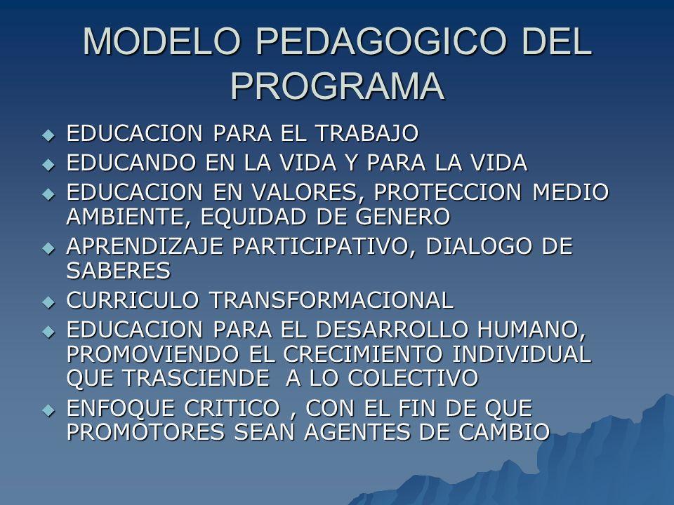 MODELO PEDAGOGICO DEL PROGRAMA