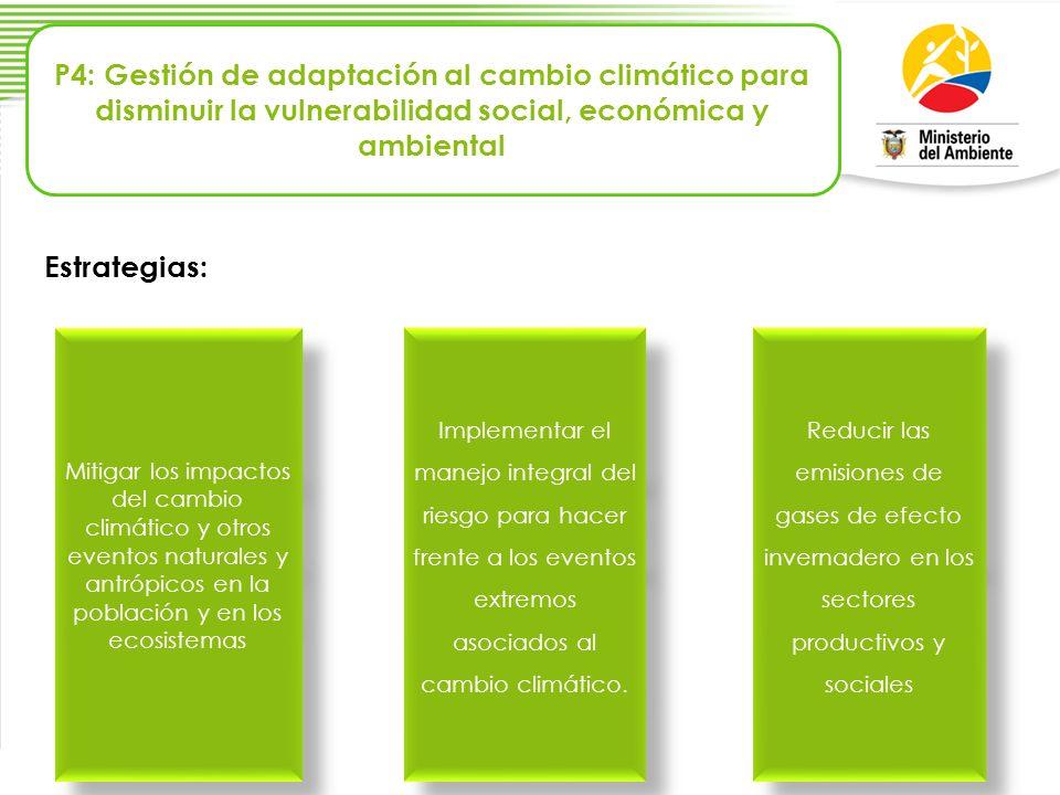 P4: Gestión de adaptación al cambio climático para disminuir la vulnerabilidad social, económica y ambiental