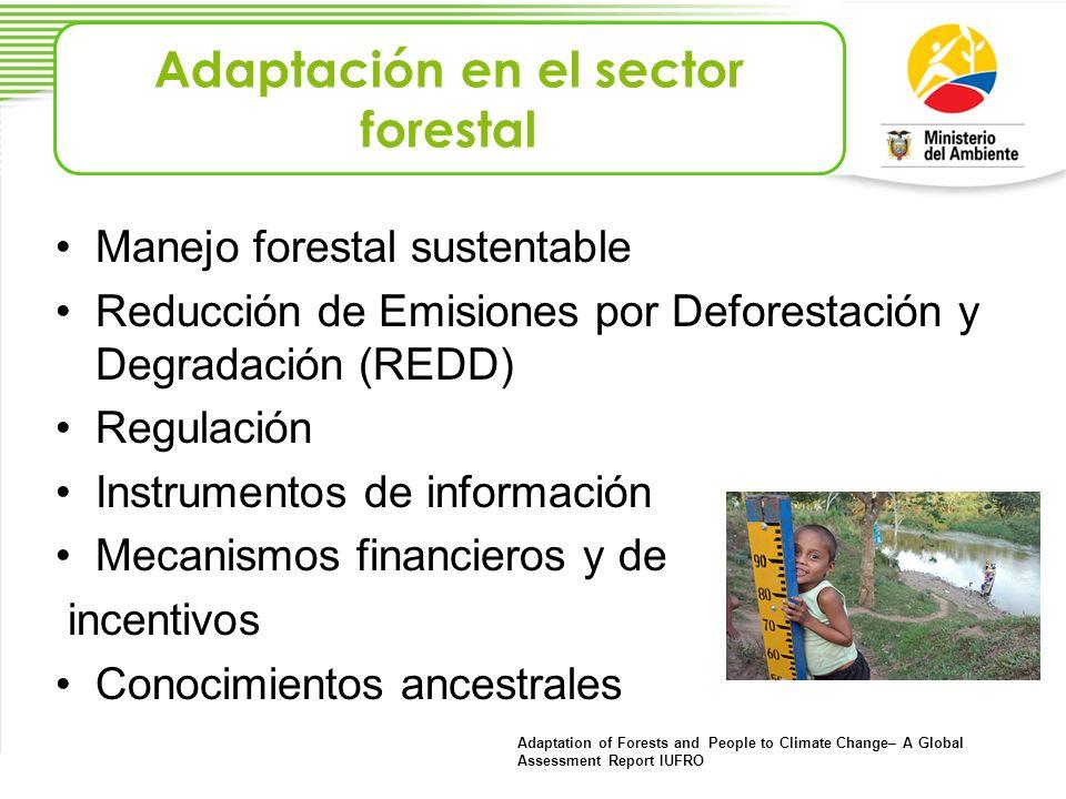 Adaptación en el sector forestal