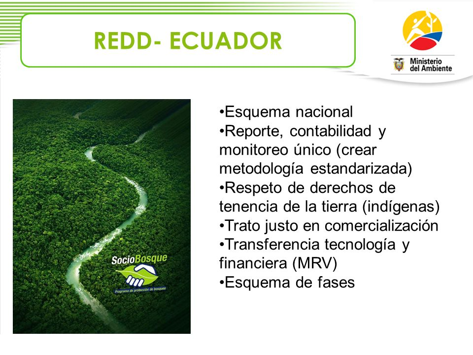 REDD- ECUADOR Esquema nacional