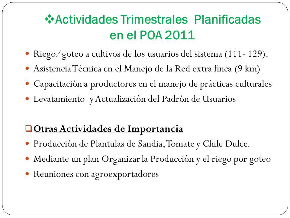 Actividades Trimestrales Planificadas en el POA 2011