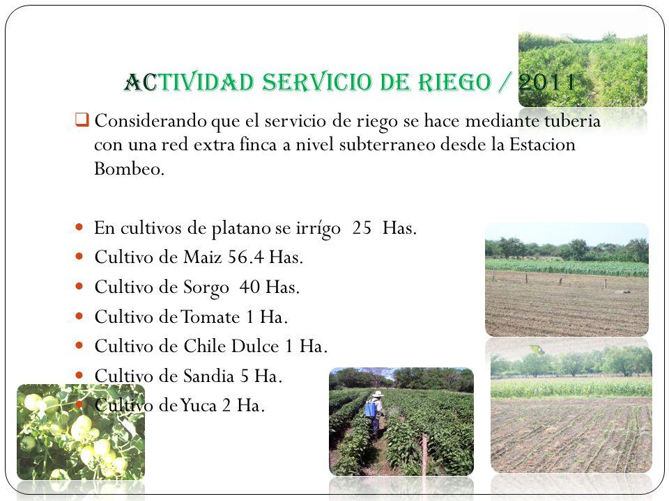Actividad servicio de riego / 2011