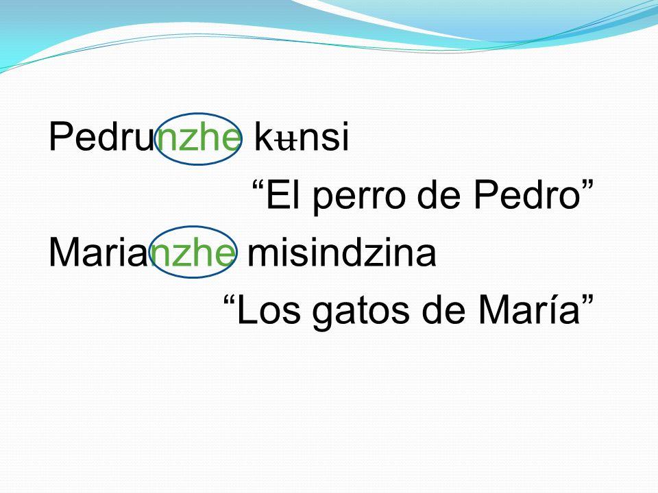 Pedrunzhe kʉnsi El perro de Pedro Marianzhe misindzina Los gatos de María