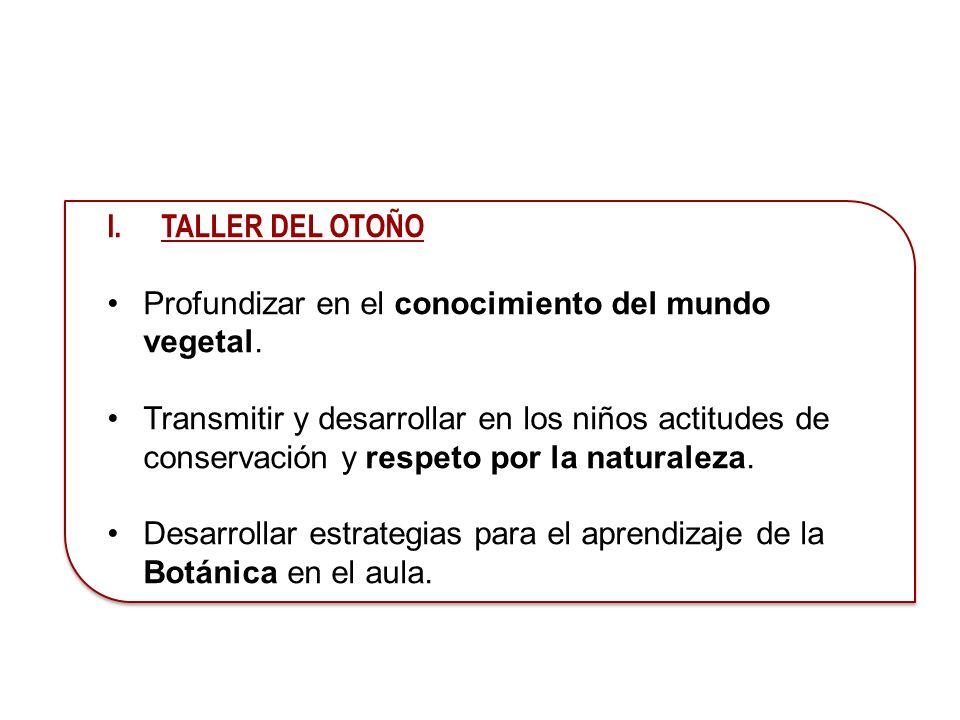 TALLER DEL OTOÑO Profundizar en el conocimiento del mundo vegetal.