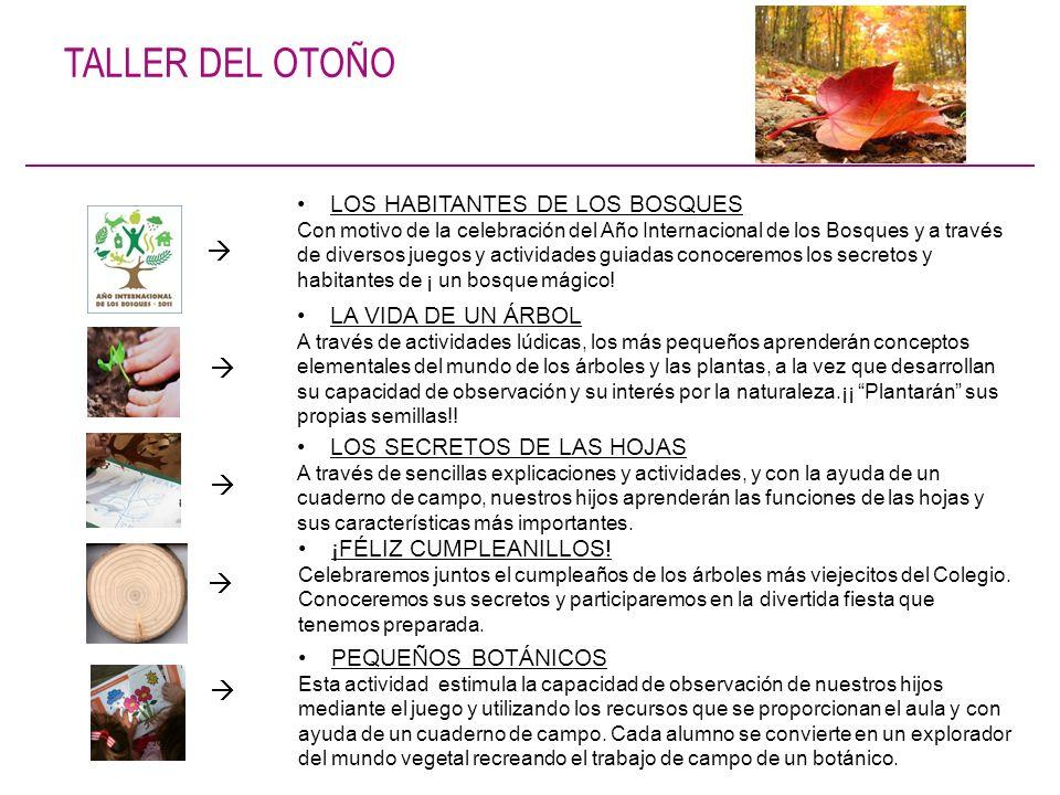 TALLER DEL OTOÑO      LOS HABITANTES DE LOS BOSQUES